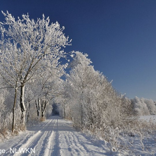 ochsenmoor_winter_09_k